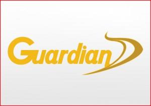 Guardian D Logo Vector